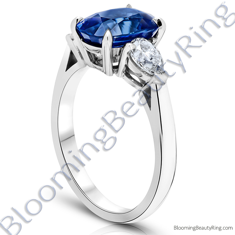 Ring Com Discount Coupons