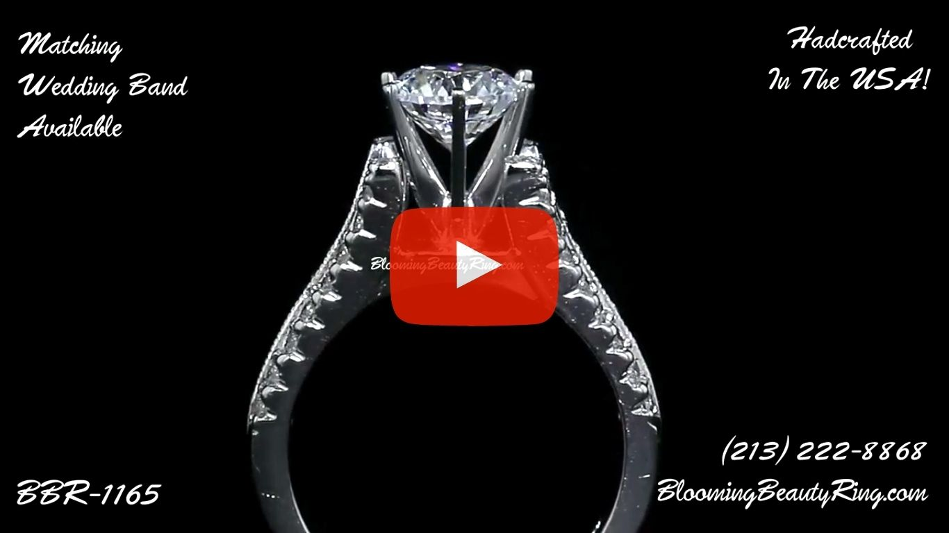 Diamonds On The Tips Modified 6 Prong Cathedral Split Band Princess Cut Ring – bbr1165 standing up video