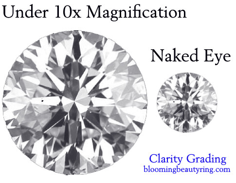 clarity grading magnification
